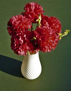 3D printed flower vase